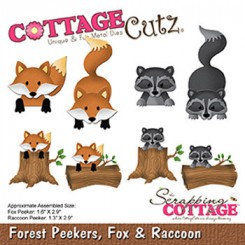 Forest peekers, Fox & Racoon