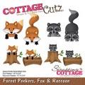 Forest peekers, Fox & Racoon