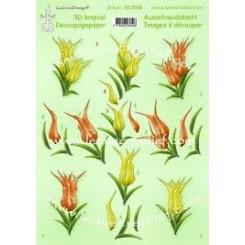3-D Tulipaner Leane Creatief