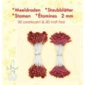 støvdrager til blomster Rød