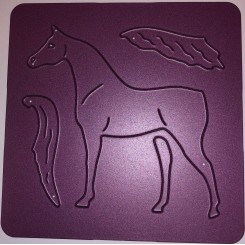 Arabian horse dies Crealies C102