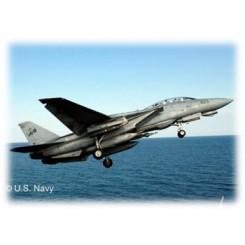 F-14D Super Tomcat, 1/100