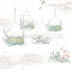 Renke buckets paper 10.1224
