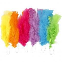 Dun mix farver 11 - 17 cm