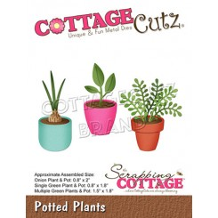 Potted Plants dies. CottageC