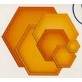 Hexagons , S4-368